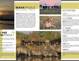 #1 for Mana Pools Blog by andradasuciu