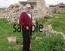 nº 40 pour Edit One Image par swapnildesign