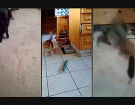 nº 14 pour Create a video by editing short youtube clips par enamhaque440