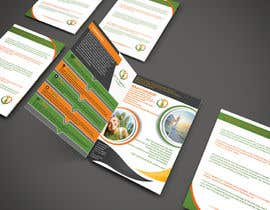 Nro 20 kilpailuun Design a Brochure käyttäjältä bismillahit