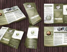 nº 20 pour 3 page Info pamphlet par saifydzynerpro