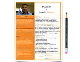 nº 15 pour Design a Flyer - Capability Statement par mdmanzurul