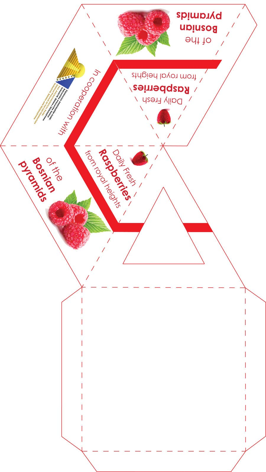 Proposition n°7 du concours Pyramid packaging - print design