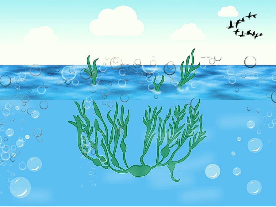 contest entry #60 for quickly need artistic diagram similar to ocean kelp  above-below