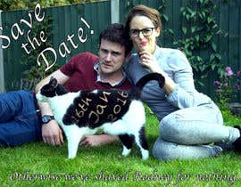 brucepagunsan tarafından Wedding invite photo with date shaved into the cat's fur - very unique brief! için no 66