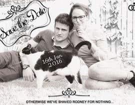 janisbendiks tarafından Wedding invite photo with date shaved into the cat's fur - very unique brief! için no 73