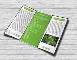 #11 para Design a Brochure por rrtvirus