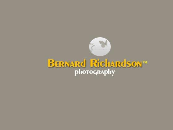 Bài tham dự cuộc thi #271 cho Logo Design for Bernard Richardson Photography
