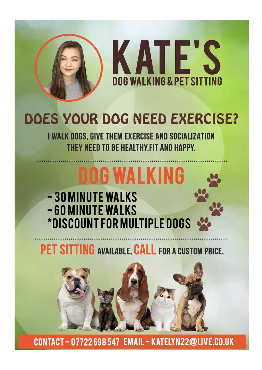 What To Put On A Dog Walking Flyer Zrom