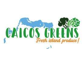 """Nro 2 kilpailuun Logo Design """"Caicos Greens"""" käyttäjältä giuliachicco92"""