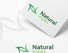 #47 for Design a Logo for an Natural indian human hair exporter company website. by AyazAhemadKadri