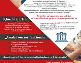 #8 for Crear un brochure informativo by anasser306