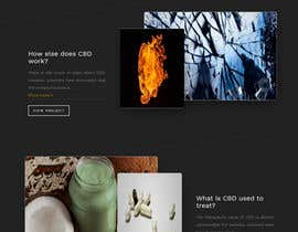 #45 for Build a Website by sabir211