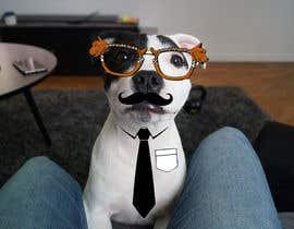 #33 para Need funny objects photoshopped on dogs photos de moza2075