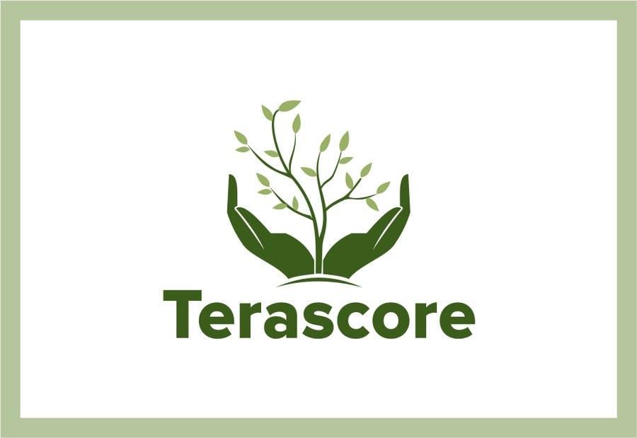 Proposition n°                                        217                                      du concours                                         Logo Design for Terascore