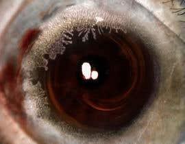 "#17 para Make ""Art"" out of medical ophthalmology pictures por artseba185"
