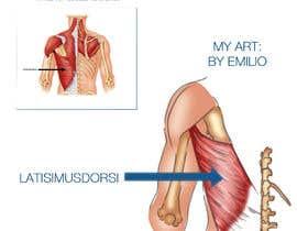 #4 for anatomy art by etamaravillera