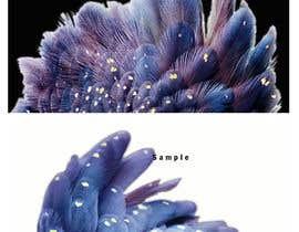 Nro 11 kilpailuun Need backgrounds on images edited käyttäjältä Yaomatai