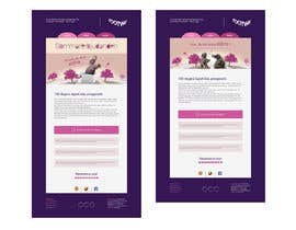 #22 untuk Customer targeted E-mail designs matching our Brand profile oleh AmroSuliman