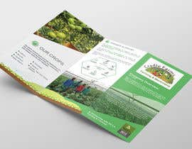 #11 for Design a Brochure & Business card by patitbiswas