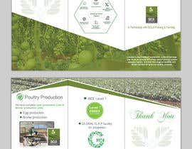 #31 for Design a Brochure & Business card by patitbiswas