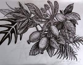 #56 untuk £100 for a Black and White hand or computer drawn tropical image of leaves, fruits and trees (see attached). oleh reddmac