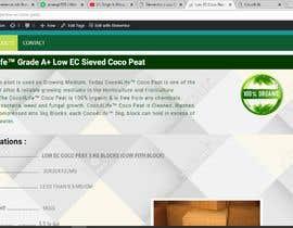 #13 dla New Design for a Website + Website Creation Based on the selected design przez jahangir505