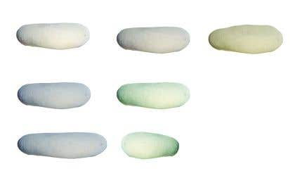 Fotografie uživatele                             i need images of pebbles