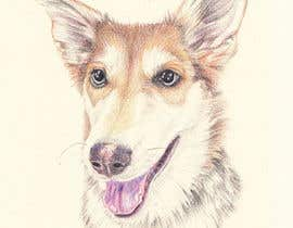 #49 for Draw a picture of my dog by barbarabacci