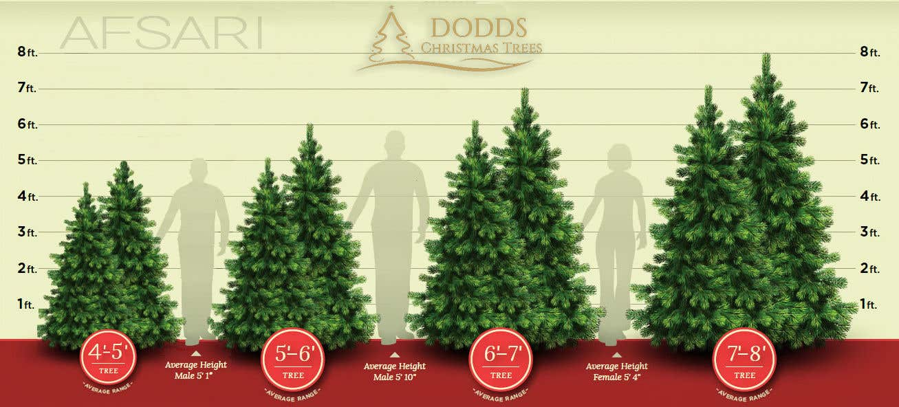 Christmas Tree Sizing Guide