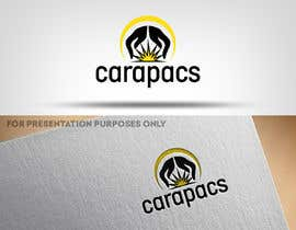 "#153 for I need a logo for ""carapacs"" Carapacs is a safety device to protect ATM from explosion attacks.  This device is engineered in switzerland. by eddesignswork"