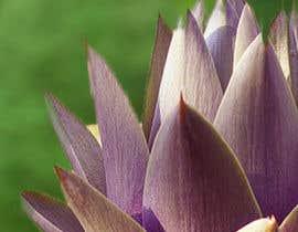 JoaoPedroPereira tarafından Create photo into a whole image of artichoke into a repeat pattern for print için no 4
