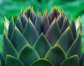 erickburgos23 tarafından Create photo into a whole image of artichoke into a repeat pattern for print için no 16
