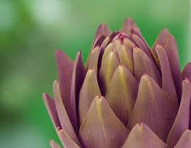 HarisDevel tarafından Create photo into a whole image of artichoke into a repeat pattern for print için no 11