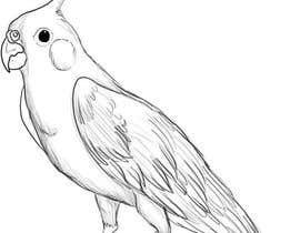 #2 for Draw me some adorable cockatiels af NURUNNAHAR017