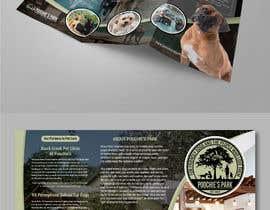 #38 untuk New Brochure with our New Logo! oleh AthurSinai