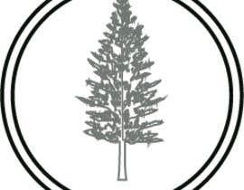 #40 for Design me a Norfolk Pine Tree logo af shahnajjamal16