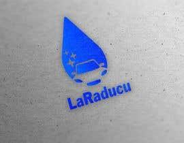 #221 untuk Design a logo for my car wash company oleh kalvisjanis