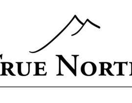 #10 cho Logo Design for True North Scientific bởi satgraphic