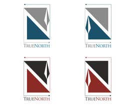 #5 cho Logo Design for True North Scientific bởi niccroadniccroad