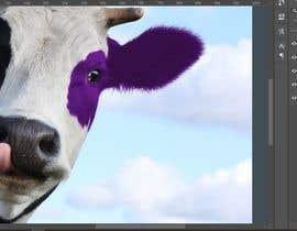 Nro 25 kilpailuun Turn a black cow into a purple cow käyttäjältä geraldalberca