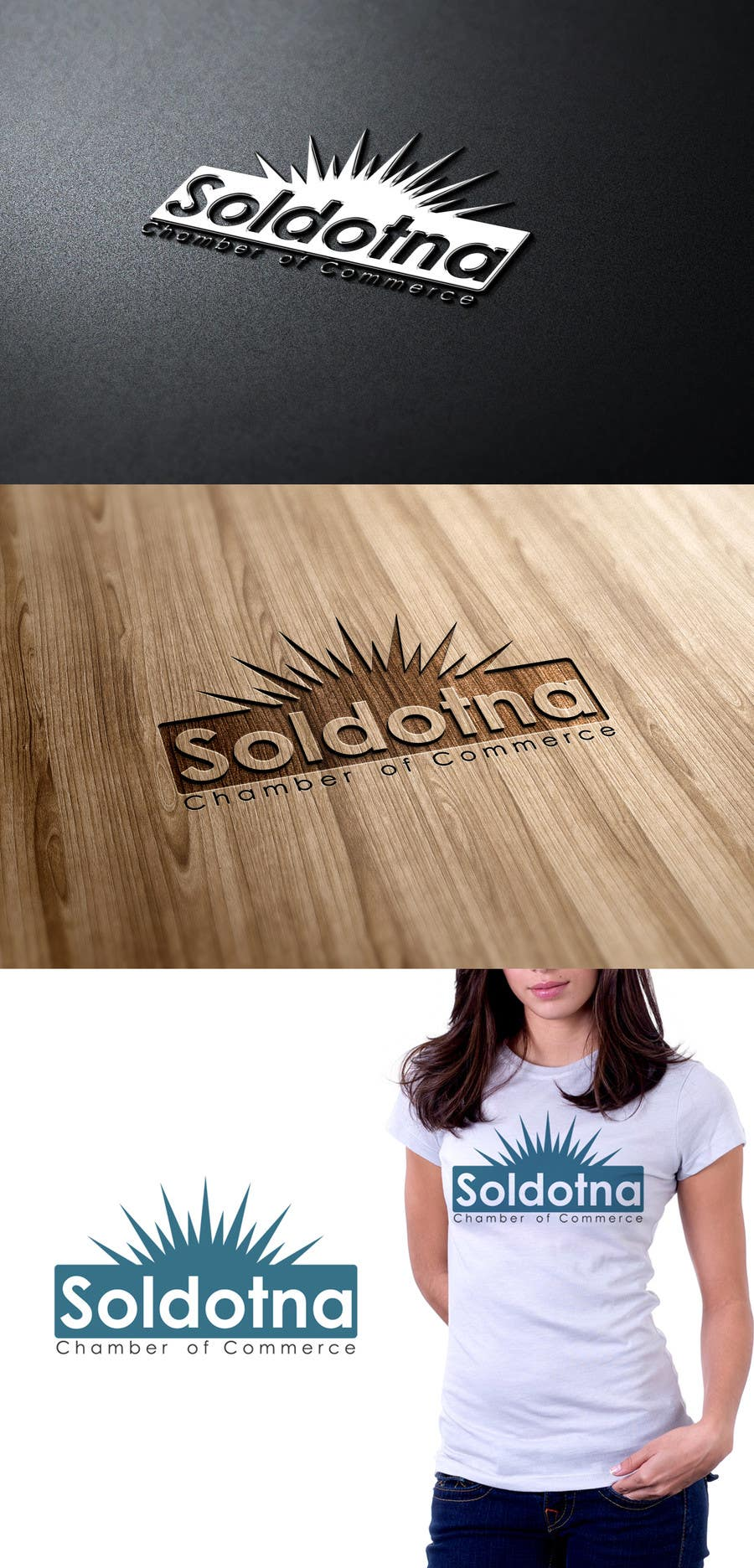 Konkurrenceindlæg #                                        9                                      for                                         Logo Design for Soldotna Chamber of Commerce