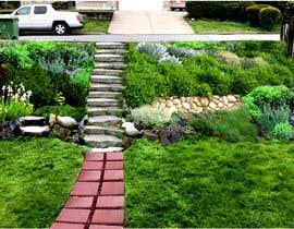 #8 for Landscaping a slope in the front yard (no retaining wall allowed) by shahidullah79