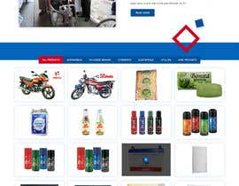 #41 for update a website by Pramod1858