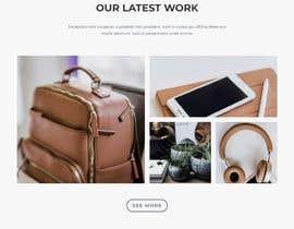 nº 18 pour Redesigning my website par tanjina4