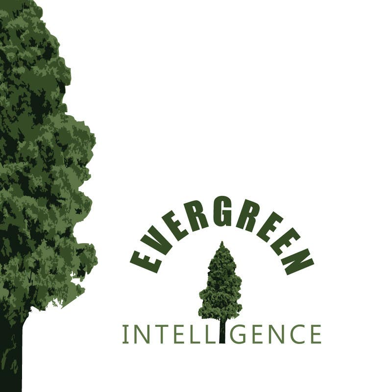 Proposition n°56 du concours Logo Design for Evergreen Intelligence