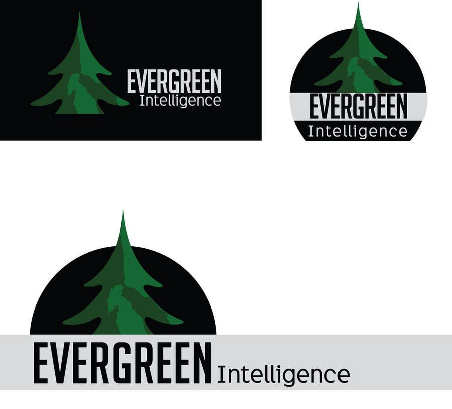 #104 for Logo Design for Evergreen Intelligence by scriptink