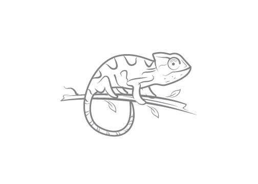 Contest Entry #52 for Chameleon logo