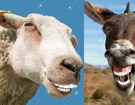 #19 for Photoshop in nice teeth into 2 animal photos (Funny picture required) by Awal01