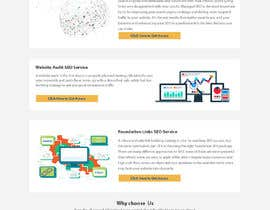 #11 для Design a Mockup of Homepage for a SEO Services Provider от dipupaul0101